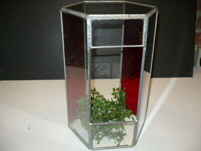 Vintage Stained Red Glass Window Hexagonal Terrarium