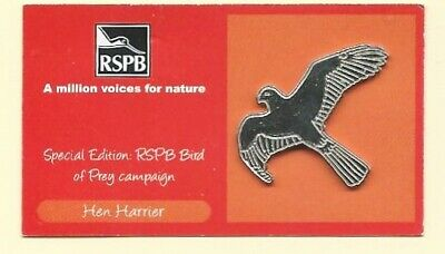RSPB Pin Badge  Silver - Hen Harrier on a Special Edition Red Campaign card