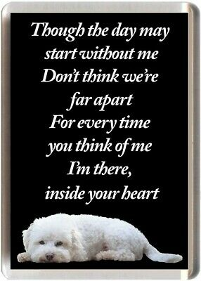 """Bichon Frise Dog Fridge Magnet /""""I have the BEST DAD IN THE WORLD/"""""""