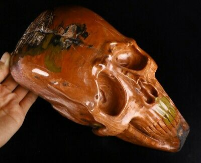 "Giant 10.4"" Red Petrified Wood Carved Crystal Alien Skull Sculpture #933"