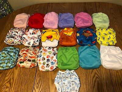 Cloth diaper lot: 18 diapers and inserts
