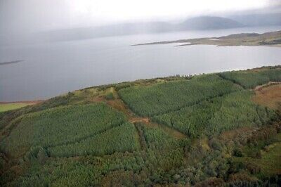 Scottish Land For Sale Investment Holiday Half An Acre