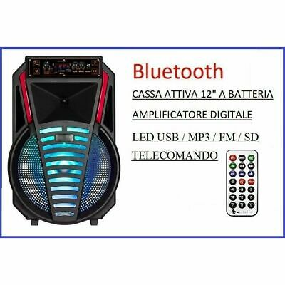 Cassa Amplificata a Batteria Ricaricabile Bluetooth SD/USB MP3 FM Portatile