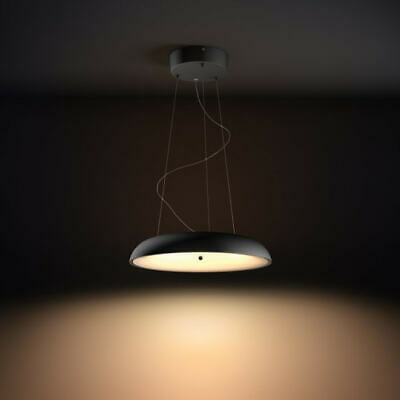 philips hue pendent ceiling light (black)