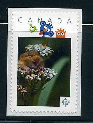 PICTURE POSTAGE  P   Little Creatures frame    2589a  PERSONALIZED     MNH   #1