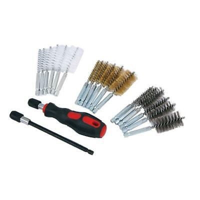Pipe Cleaning & Decarbonising Wire Brass Nylon Steel Brush Set Hex Shank 20Pc