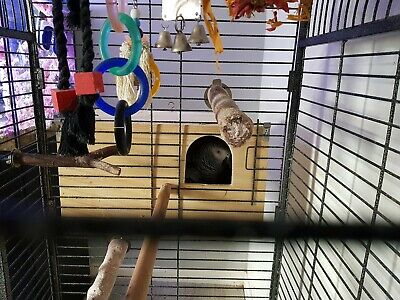 African Grey Parrot Nest Box/Sleeping box (These are hand made to Order)