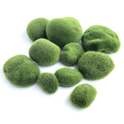 10 X Moss Balls Aquarium aquatic live Plants Marimo Ball shrimps Fish Tank