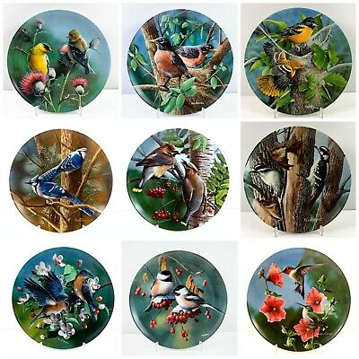 Vintage Edwin M. Knowles Birds of Your Garden by Kevin Daniel ~ Fine China Plate