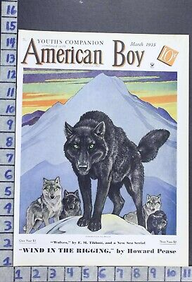 1935 Wolf Pack Arctic Wildlife Biology Zoology Illus Paul Bransom Cover Cov434