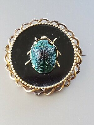 Antique 1890s Green/Blue Scarab Black Onyx &18k Gold Pin Brooch 14.9 grams Bug