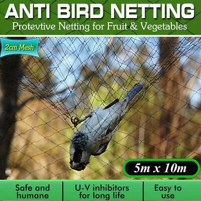 10M Wide x 5M Extra Strong Black Anti Bird Netting for Garden, Allotment or  US