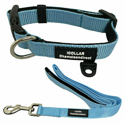 PREMIUM BLUE Neoprene Dog lead & Collar sets,  with 4 Sizes of collar