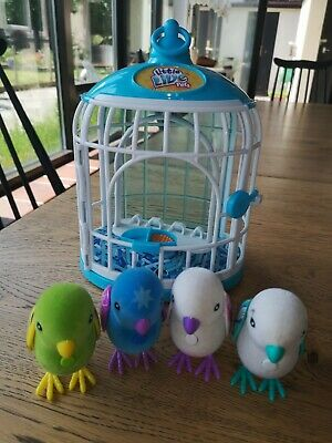 Lille Live Pets Birds X4 And Birdcage