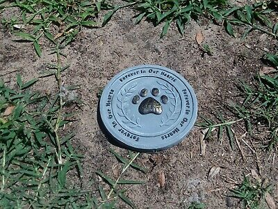 Forever In Our Hearts. Pet Memorial Stone/Plaque  6.1/4 inches