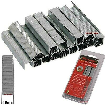 1250 PIECE 12mm SQUARE FLAT STAPLES 1.2 x 12 x 10.6mm FOR 3 / 4 IN 1 STAPLE GUNS