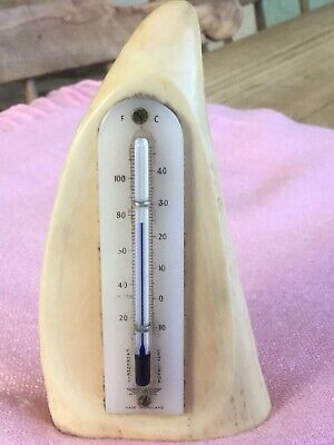 thermometer on a faux whales tooth