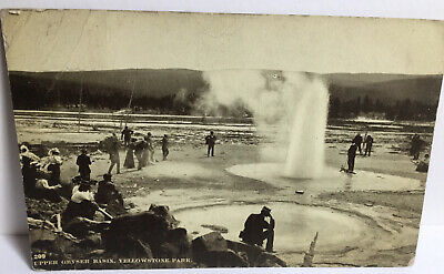 1907 Picture Postcard Of Upper Geyser Basin Yellowstone Park People At Geyser