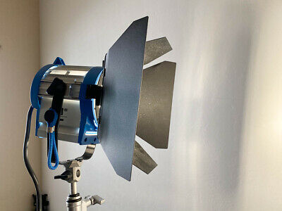 Arri 650 Plus Tungsten Fresnel Continuous Light 3200K + Barndoors and Scrim