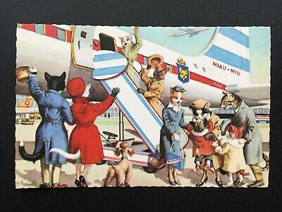 Airplane Alfred Mainzer 4934 Postcard Anthropomorphic Cats Fun Comic Funny