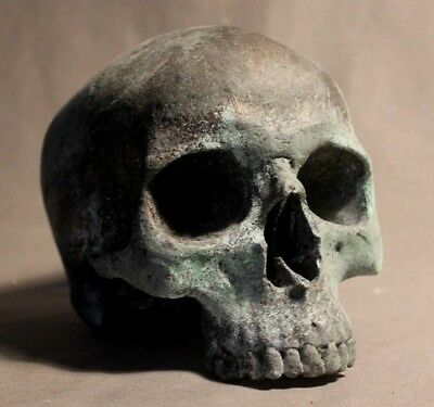 Human Skull Anatomical Medical Death Face Oddity Theater Film Prop Scientific