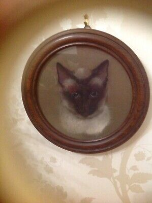 Very Old Painting Of A seal Point Siamese Cat In A Circular Frame