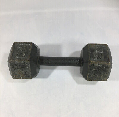 20 Lb Cast Iron Dumbbell Weight (SINGLE) Pre-Owned FREE SHIPPING