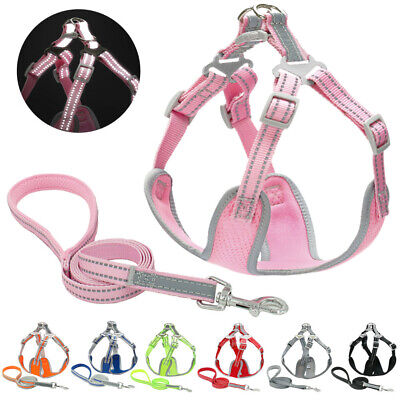 Reflective No Pull Dog Harness and Leash for Small Medium Large Puppy Mesh Vest