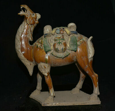 "20.4"" Old china Tangsancai dynasty Fengshui camel llama anima sculpture"