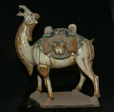 "17.2"" Chinese Tangsancai Fengshui camel llama animal beast face sculpture"