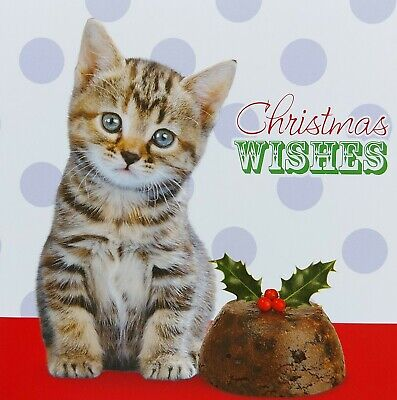 Christmas Cards 10 Pack Cute Pets Square Family Friends Kitten Puppy Xmas