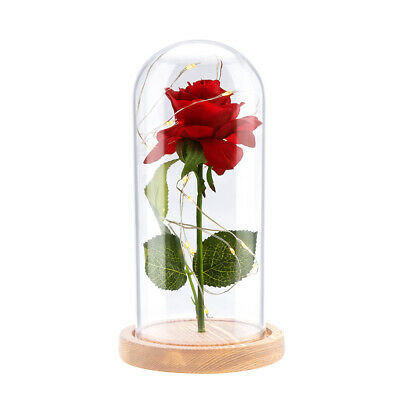 LED The Beauty&The Beast Enchanted Rose Glass Dome Lighted Wedding Decor  USA