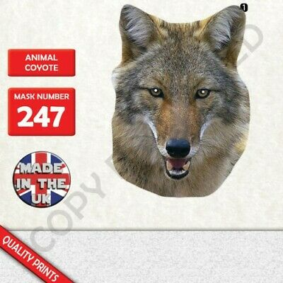 Animal Coyote Card Face Mask Masks For Party Evening Halloween Fancy Dress