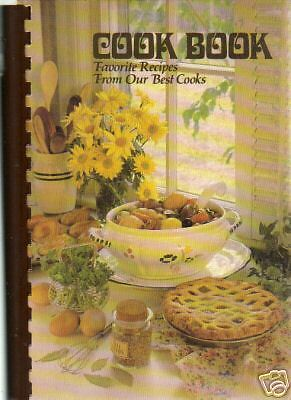 PLEASANT VALLEY IA* 1982 MISSISSIPPI VALLEY CERAMICS *HINTS COOK BOOK *LOCAL ADS