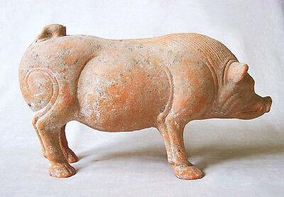 MAGNIFICENT Ancient Chinese HAN DYNASTY TERRACOTTA BOAR, 23 AD - 220 AD