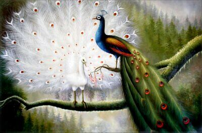 Quality Hand Painted Oil Painting Peacocks on Tree Top 24x36in