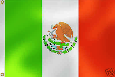 Pack Of Two Large Fabric Mexican Flags