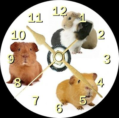 Cute Guinea Pig Novelty Cd Clock Can be personalised