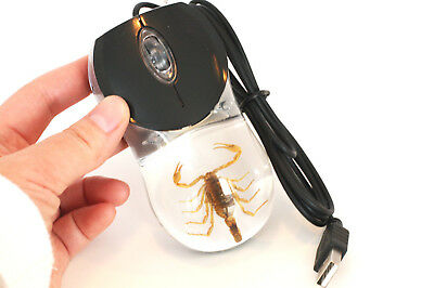 Real SCORPION Computer Mouse Clear