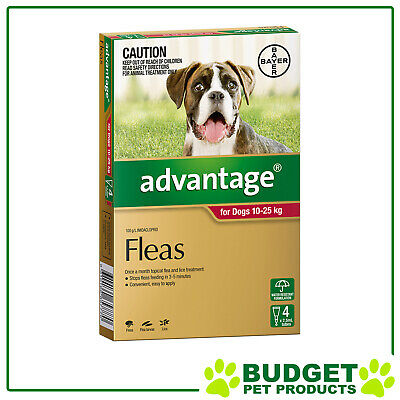 Advantage For Dogs 10-25kg 4 pack