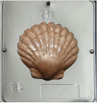 Nautical Extra Large Scallop Shell Platter Chocolate Plastic Candy Mold N00005