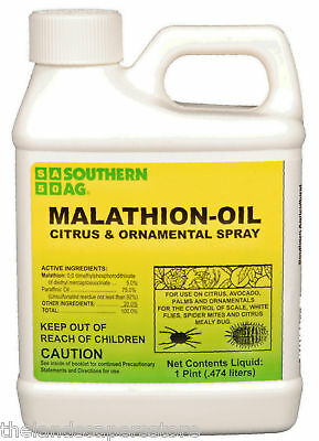 Malathion Oil Citrus & Ornamental Spray Pint 16oz