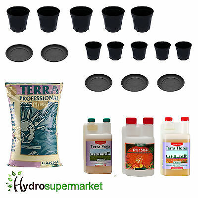 Canna Starter Pack With Soil, Nutrients, Pots, Saucers