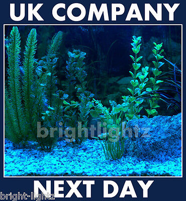 Led Strip Light Set Blue Submersible Aquarium Lights Ip68 Fish Tank Lighting Uk
