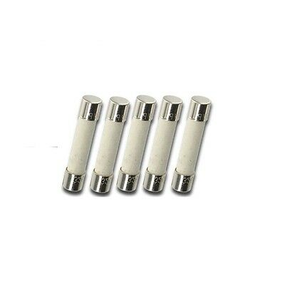 5pcs AGC 10A Ceramic Fast blow acting Fuse 250V AGC10A 6x30mm USA Free Shipping