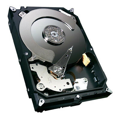 Western Digital Festplatte 500 GB WD 3,5 Zoll Green SATA Computer PC intern 32MB