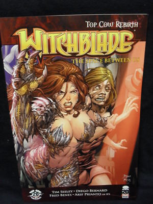 Witchblade #156 Tim Seeley Cvr B (Image Comics)