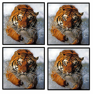 Tiger - Coasters - Set Of 4 Fun Coasters - Gift/ Present - Brand New