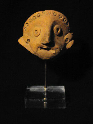 Teracotta Bactrian Head 300 BC