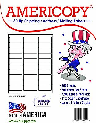 "Americopy/Ace Brand 1"" x 2 5/8""  Labels 90,000 pk Laser of Inkjet  30 Up"
